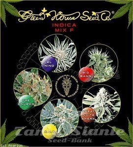 GREEN HOUSE SEEDS - Indica Mix F